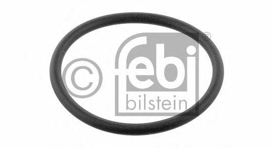 17966 Garnitura termostat FEBI BILSTEIN